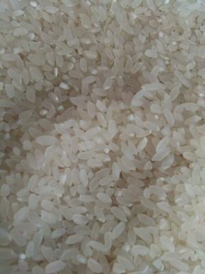 内蒙古自治区赤峰市巴林右旗长粒香大米 绿色食品 早稻 二等品