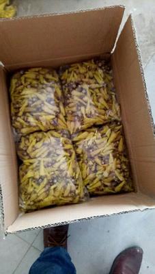 这是一张关于金花葵花茶 散装 特级的产品图片