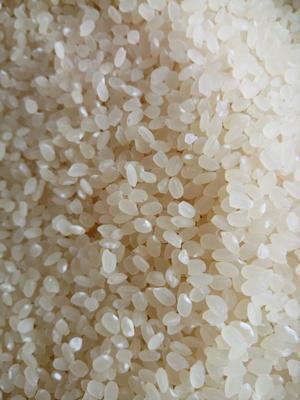 这是一张关于楚粳28号大米 非有机大米 中稻 一等品的产品图片