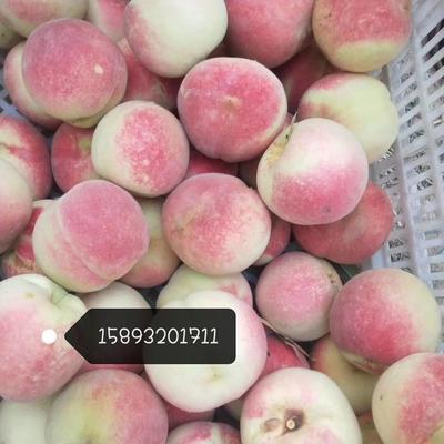 这是一张关于映霜红蜜桃 70mm以上 3 - 4两的产品图片