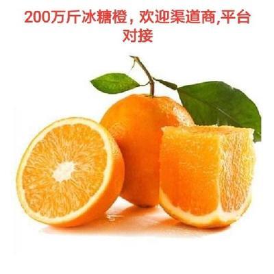 这是一张关于黔阳冰糖橙 60.0mm 4两以下的产品图片