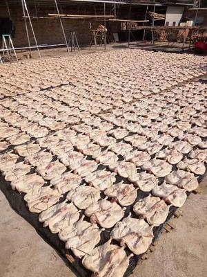 这是一张关于韶关板鸭 散装的产品图片