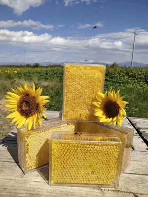 甘肃省酒泉市玉门市蜂巢蜜 盒装 90%以上 2年