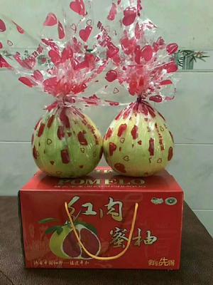 福建省莆田市荔城区蜜柚 2.5斤以上