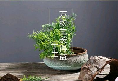 这是一张关于种植土的产品图片