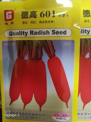 这是一张关于水萝卜种子 良种的产品图片