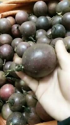 这是一张关于紫香一号百香果 统货的产品图片