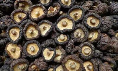 这是一张关于普通干香菇 袋装 半年的产品图片