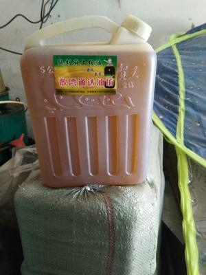 甘肃省庆阳市环县有机亚麻籽油