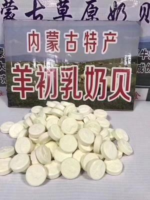 广东省广州市白云区奶酪 18-24个月 阴凉干燥处