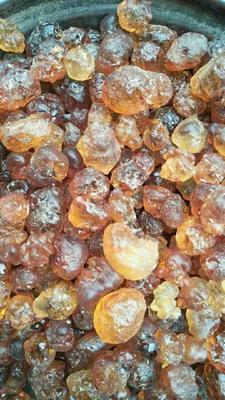 湖北省随州市曾都区食用桃胶 24个月以上