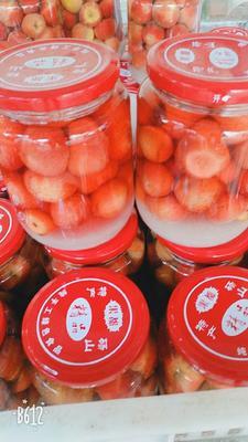 安徽省宿州市砀山县山楂罐头 18-24个月