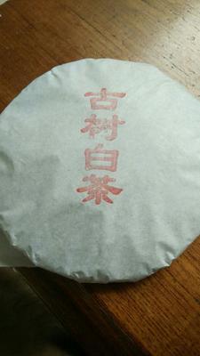 云南省临沧市永德县白牡丹茶 袋装 一级