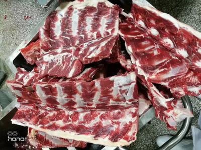 这是一张关于牛脊骨 的产品图片
