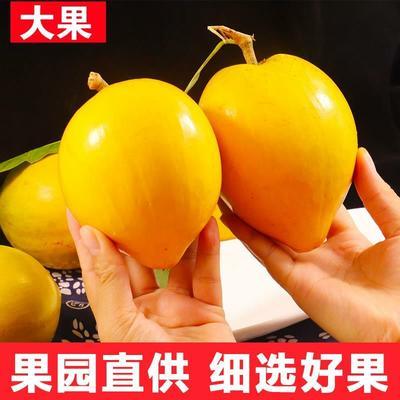 江苏省南京市雨花台区越南蛋黄果 30-60g