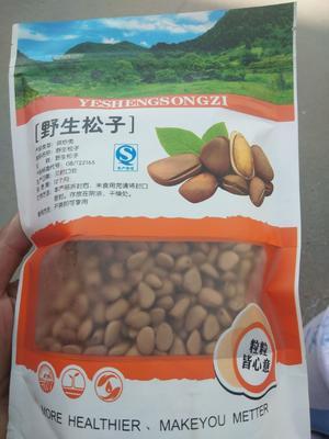 甘肃省天水市麦积区松子 6-12个月 包装