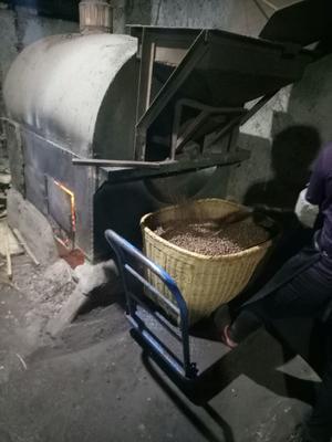 湖南省常德市鼎城区茶叶籽油