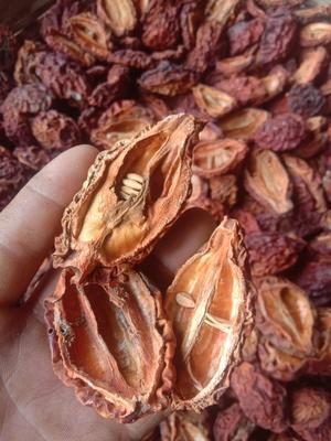 云南省大理白族自治州剑川县酸木瓜 0.5 - 1斤