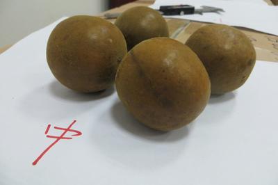 广西壮族自治区桂林市永福县永福罗汉果 2 - 3两