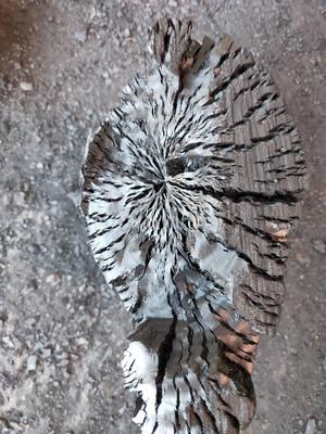 广西壮族自治区玉林市北流市果木木炭