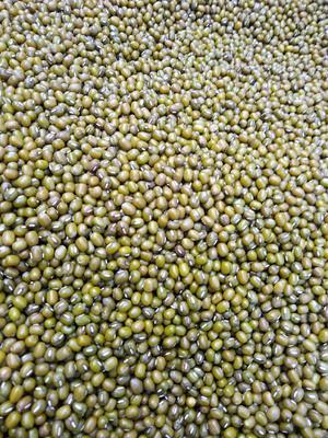 四川省成都市青羊区东北绿豆 散装 1等品