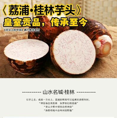 广西壮族自治区桂林市荔浦县速冻芋艿