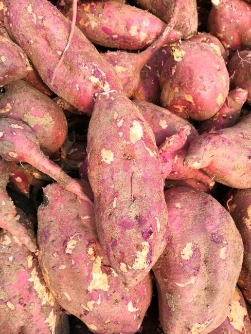 商薯19号 红皮 6两~1斤
