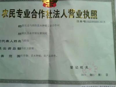 河南省开封市尉氏县107杨