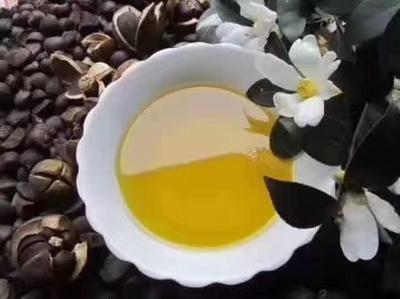 广东省清远市连州市茶叶籽油