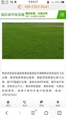 湖南省郴州市苏仙区四季青