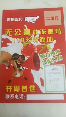 内蒙古自治区包头市九原区红颜草莓 50克以上