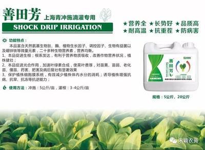 上海青专用冲施肥