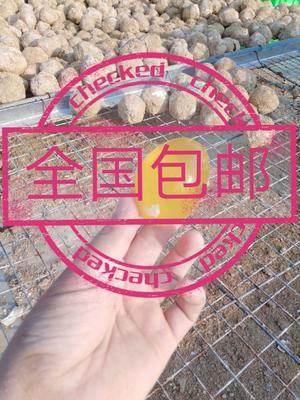 河南省郑州市管城回族区松花皮蛋