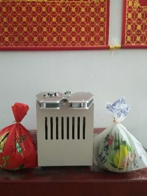 福建省漳州市平和县果蔬扎线机