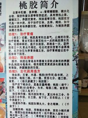 湖南省郴州市资兴市野生桃胶 18-24个月