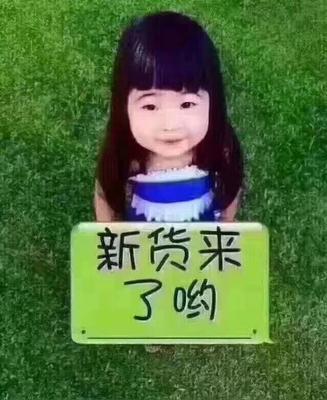 广东省汕头市潮阳区广东桑 2 - 3cm
