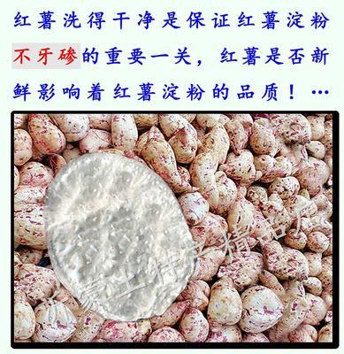 山东省临沂市临沭县红薯淀粉