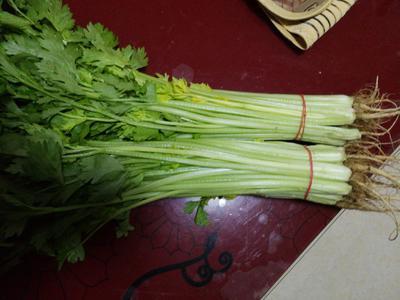 安徽省蚌埠市怀远县香芹 45~50cm 大棚种植 0.5斤以下