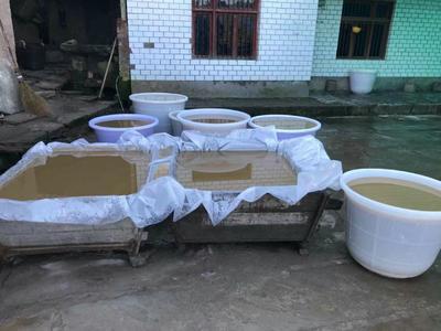 四川省泸州市合江县红薯淀粉