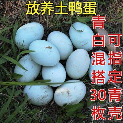 湖南省湘西土家族苗族自治州龙山县土鸭蛋 食用 箱装