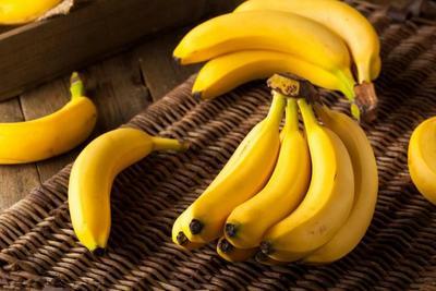 云南省红河哈尼族彝族自治州金平苗族瑶族傣族自治县三家香蕉 八成熟