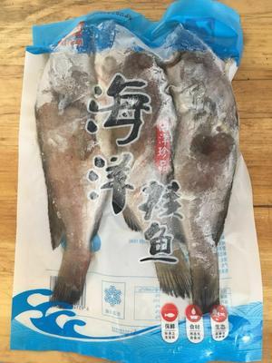 湖南省长沙市雨花区海红斑 野生 0.5公斤以下
