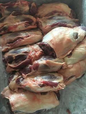 河北省保定市唐县猪肉类 简加工