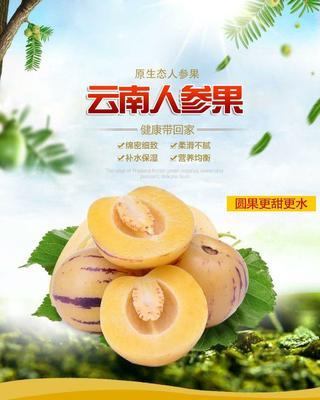云南省昆明市官渡区圆果 2 - 3两以上