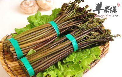 贵州省黔西南布依族苗族自治州望谟县野生蕨菜 鲜货
