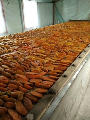 吉林省白山市长白朝鲜族自治县红心红薯干 条状 袋装 半年