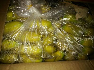 河北省邯郸市丛台区西双版纳香蕉 八成熟