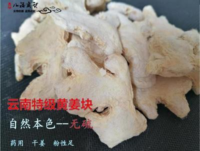 广西壮族自治区玉林市玉州区小黄姜干姜片 散装 6-12个月