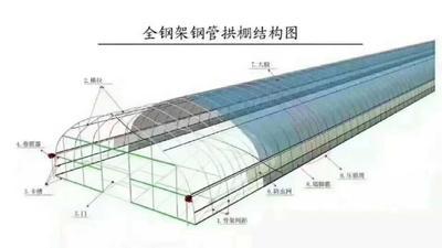 文洛式温室大棚