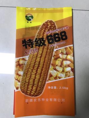 辽宁省沈阳市新民市玉米种子 ≥99% ≥97% ≥99% 常规种 ≤13%